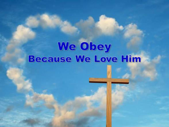we obey